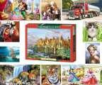 lot de 254 puzzle